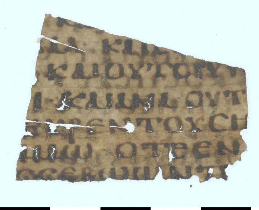 Rückseite des Papyrusfragments mit sieben Zeilenresten in griechischer Schrift
